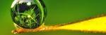 Биоактивные жидкости (моно)