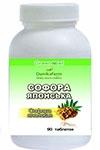 Софора японская (Styphnolóbium japónicum) (90 таблеток по 0,4г)